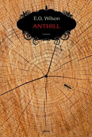 anthill-2